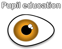 Pupil education