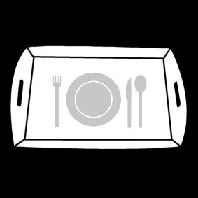 tray / dinner tray